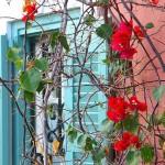 Έρωτας και κήπος