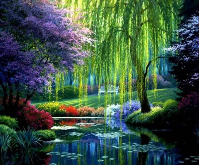 Εξαιρετικές Εικόνες της Φύσης12