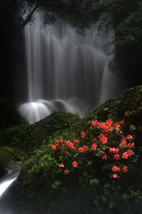 Εξαιρετικές Εικόνες της Φύσης16