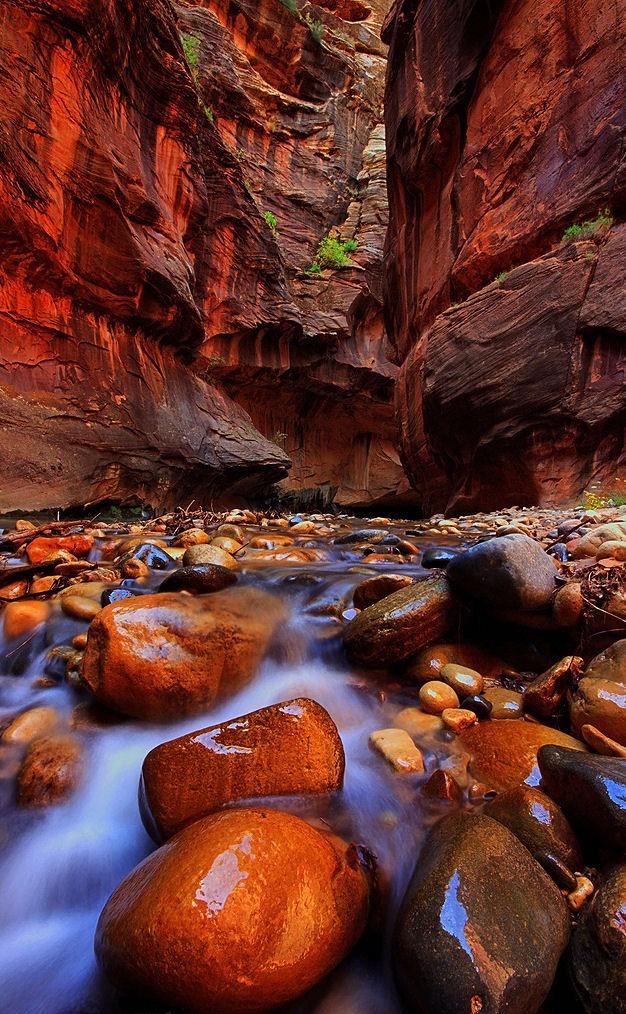 Εξαιρετικές Εικόνες της Φύσης18