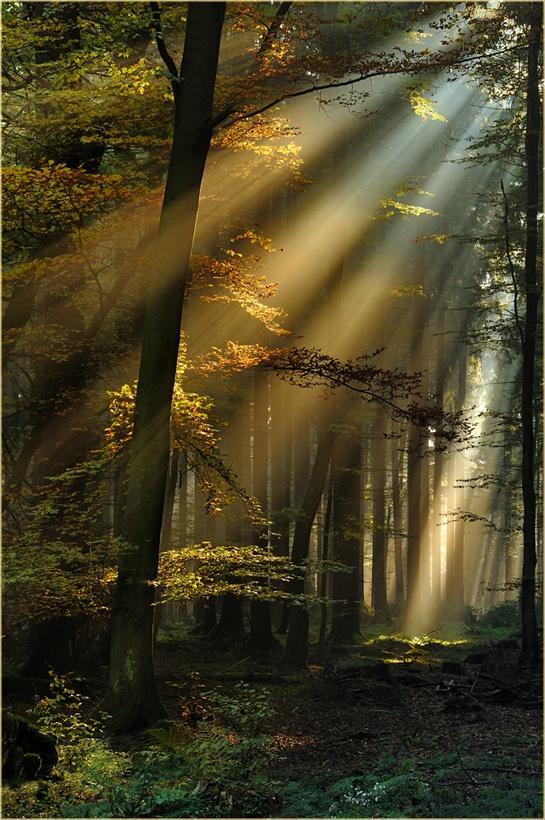 Εξαιρετικές Εικόνες της Φύσης22