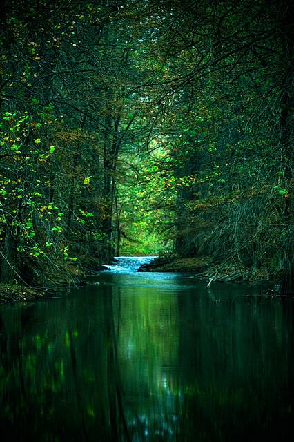 Εξαιρετικές Εικόνες της Φύσης23