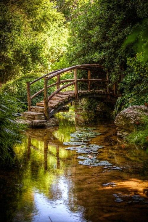 Εξαιρετικές Εικόνες της Φύσης24
