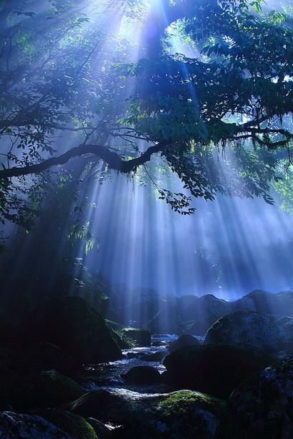 Εξαιρετικές Εικόνες της Φύσης3