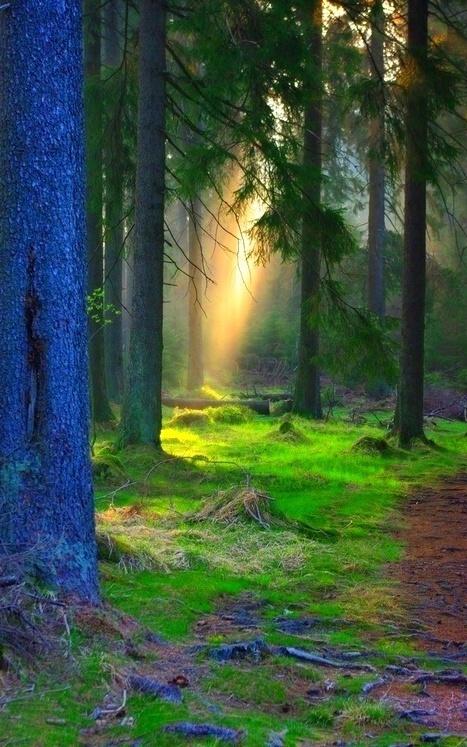 Εξαιρετικές Εικόνες της Φύσης4