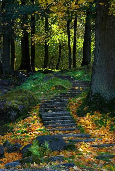Εξαιρετικές Εικόνες της Φύσης6
