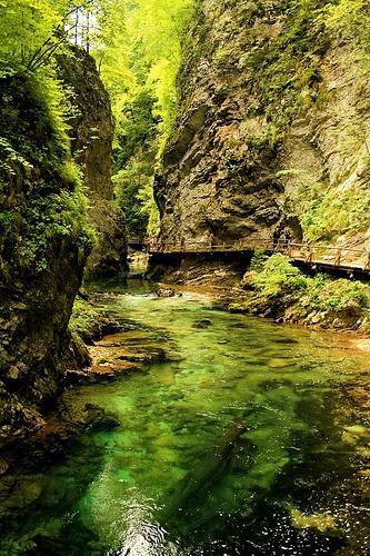 Εξαιρετικές Εικόνες της Φύσης7