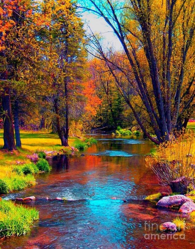 Εξαιρετικές Εικόνες της Φύσης8