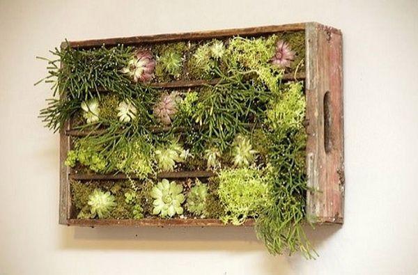 DIY σχέδια κάθετου κήπου10