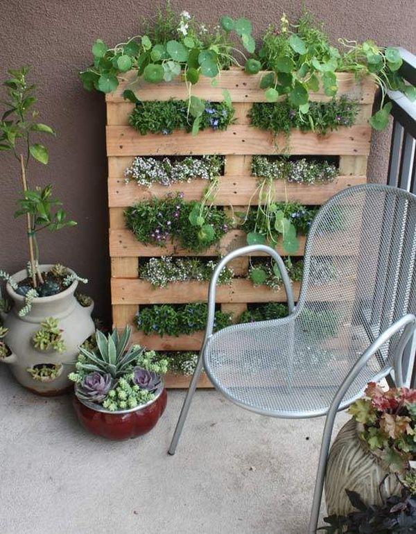 DIY σχέδια κάθετου κήπου12