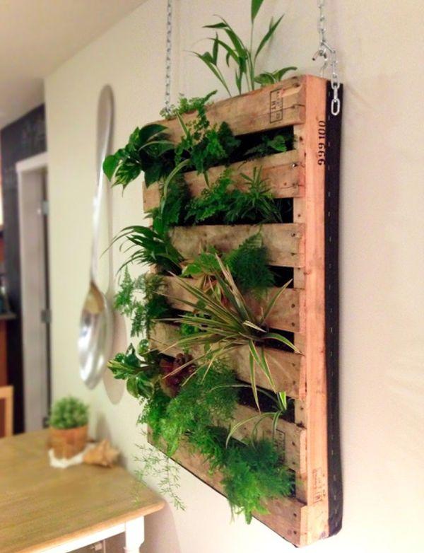 DIY σχέδια κάθετου κήπου3