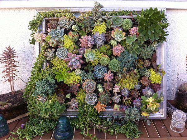 DIY σχέδια κάθετου κήπου6
