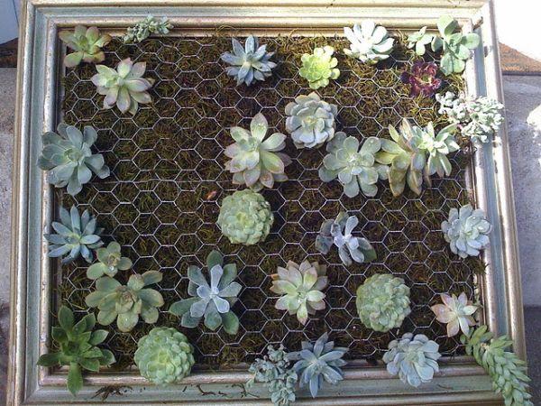 DIY σχέδια κάθετου κήπου7