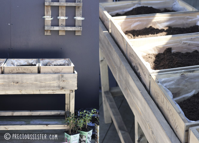 Λαχανόκηπος στο μπαλκόνι από παλέτες και καφάσια1