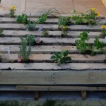 diy κήπος από παλέτα