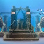Neptune Memorial Reef, Key Biscayne