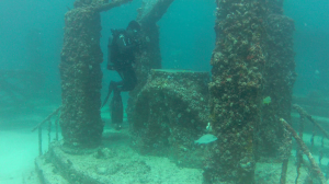 Neptune Memorial Reef2, Key Biscayne