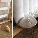 Ταΐστρες για τα κοτόπουλα με σωλήνες PVC1