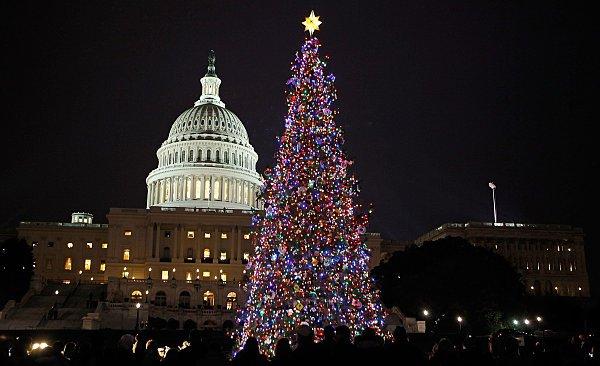 Τα πιο όμορφα χριστουγεννιάτικα δέντρα στον κόσμο12