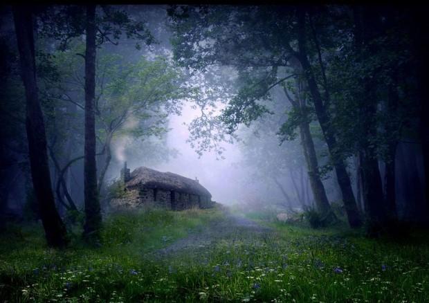 σπίτια στη μέση της φύσης1