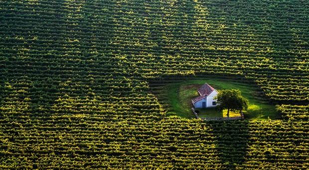 σπίτια στη μέση της φύσης16