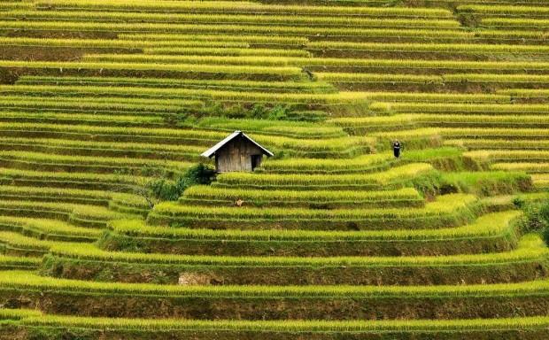 σπίτια στη μέση της φύσης22