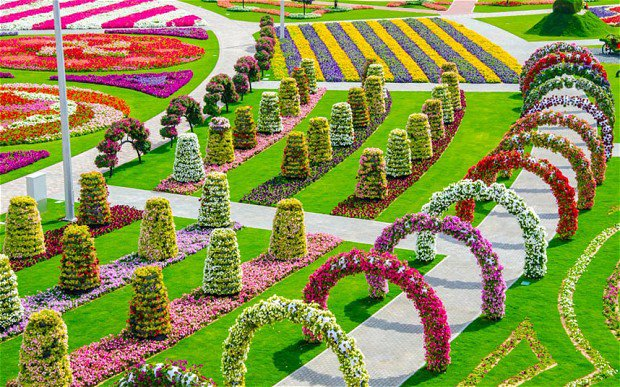 Marvelous-Dubai-Miracle-Garden-1