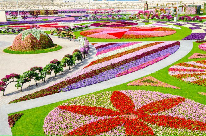 Marvelous-Dubai-Miracle-Garden-4