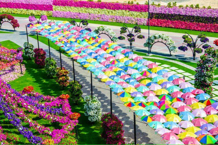 Marvelous-Dubai-Miracle-Garden...
