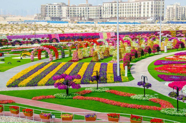 Marvelous-Dubai-Miracle-Garden..