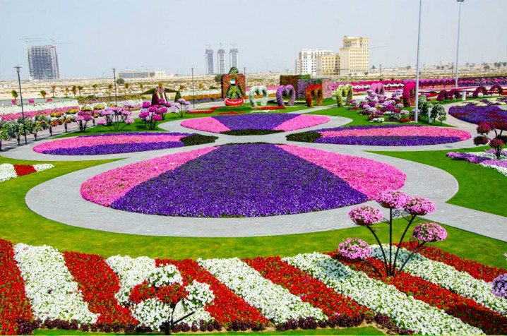Marvelous-Dubai-Miracle-Garden.