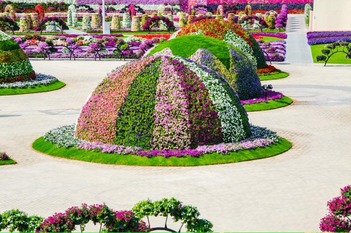 Marvelous-Dubai-Miracle-Garden,