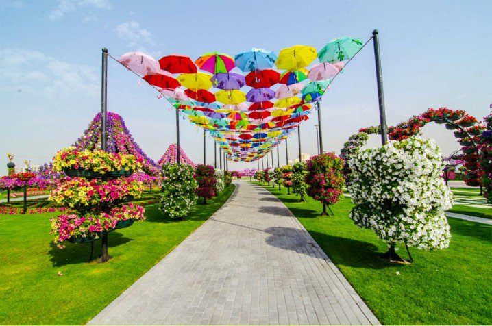 Marvelous-Dubai-Miracle-Garden
