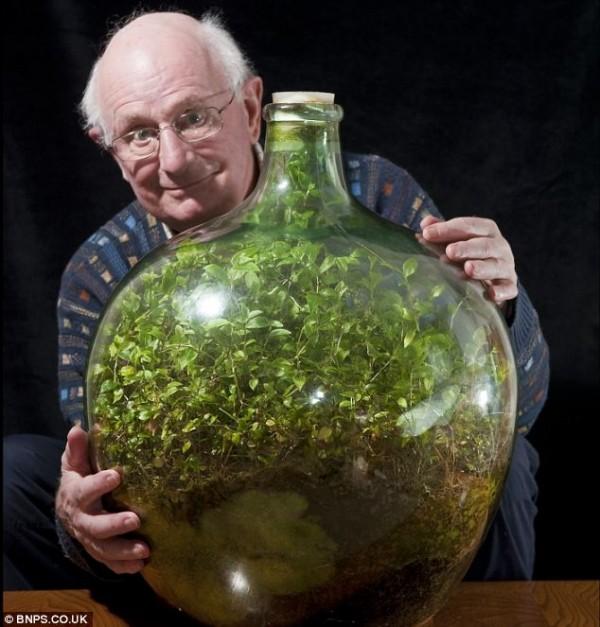 Σφραγισμένη φιάλη Κήπος ευδοκιμεί για 53 χρόνια με ένα πότισμα1