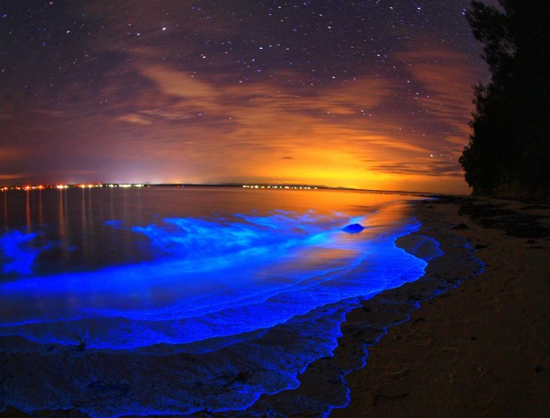 Jervis Bay, Australia1