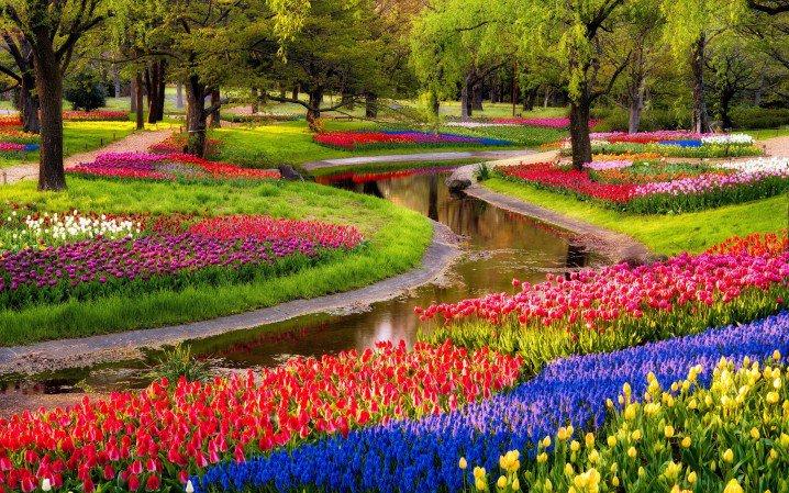 Keukenhof Garden 02