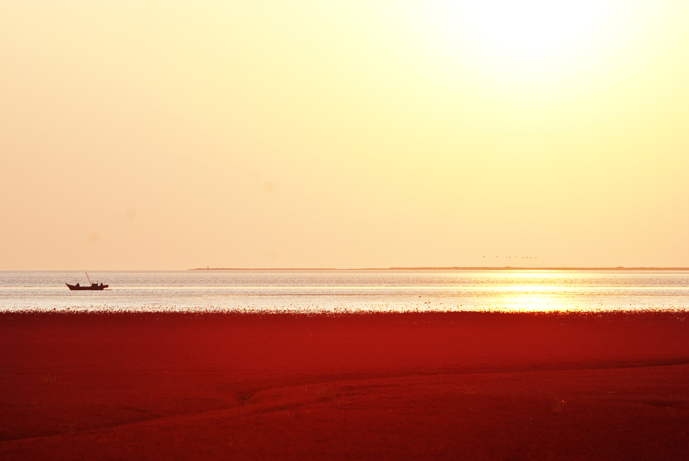 Red Seabeach, China