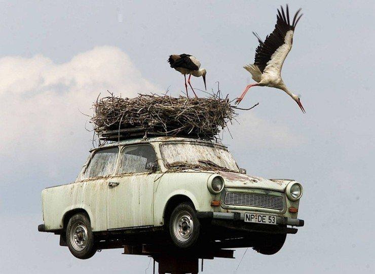 Πάνω στο παλιό αυτοκίνητο