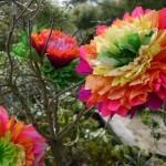 Χάρτινα λουλούδια σε κλαδιά
