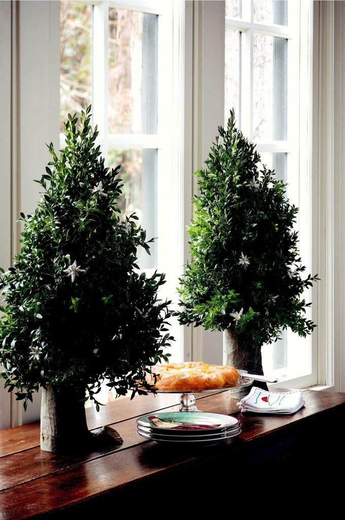 boxwood tabletop trees from Garden Bouquets and Beyond by Suzy Bales