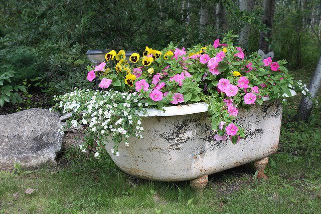Απίθανες γλάστρες Κήπου14