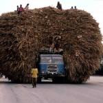 Τα πιο υπερφορτωμένα οχήματα σε όλο τον κόσμο3