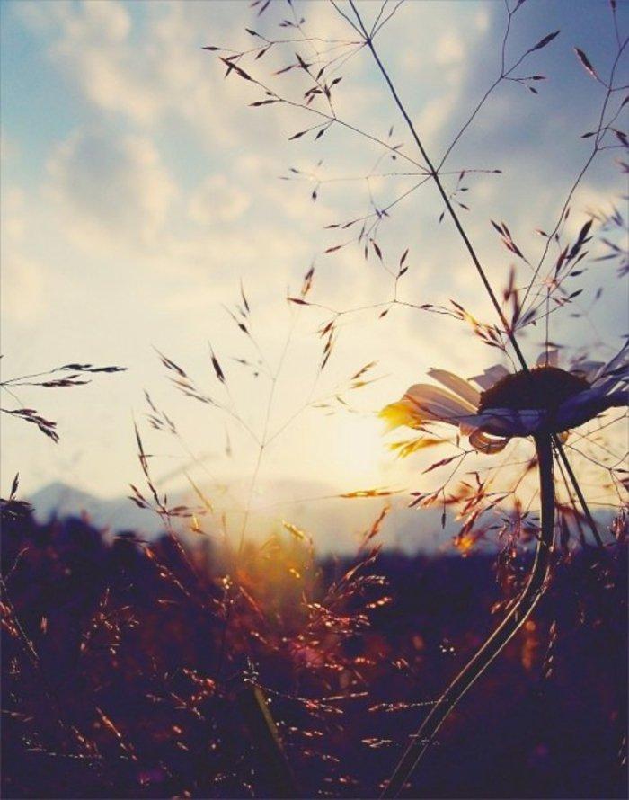 ομορφιά του ανατέλλοντος ηλίου15