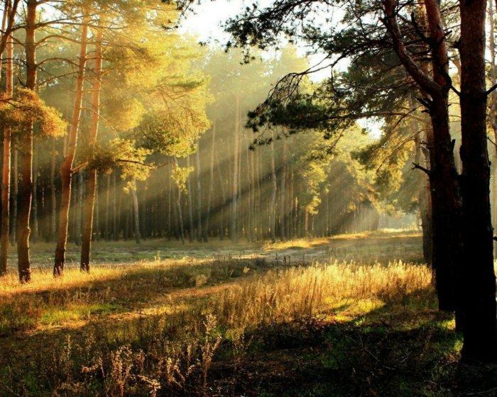 ομορφιά του ανατέλλοντος ηλίου44