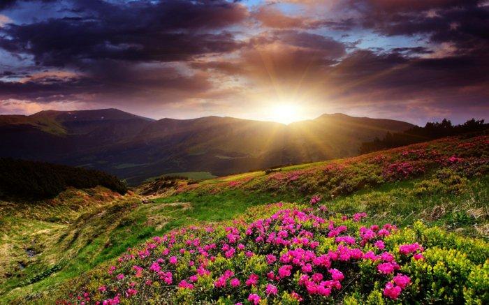 ομορφιά του ανατέλλοντος ηλίου78