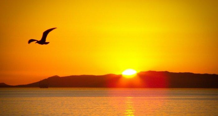 ομορφιά του ανατέλλοντος ηλίου8