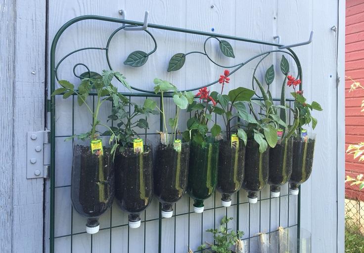 Ιδέες DIY Κάθετου κήπου7