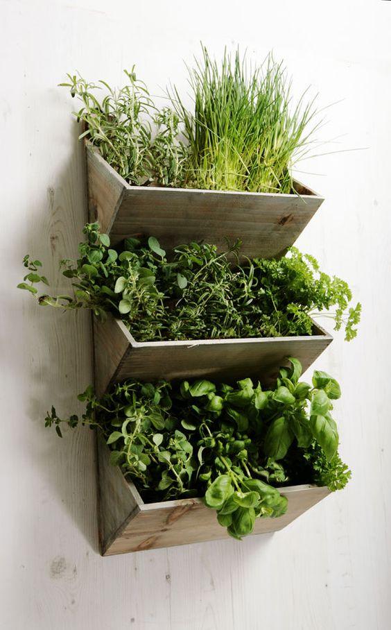 ιδέες διακόσμησης κάθετων επιφανειών με φυτά12