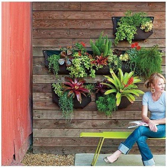 ιδέες διακόσμησης κάθετων επιφανειών με φυτά18