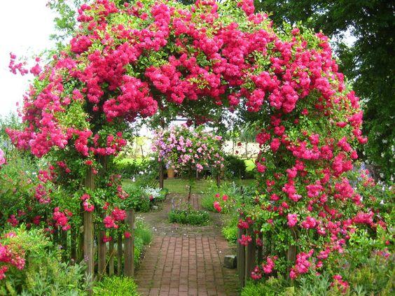 σχέδια εισόδου κήπου2
